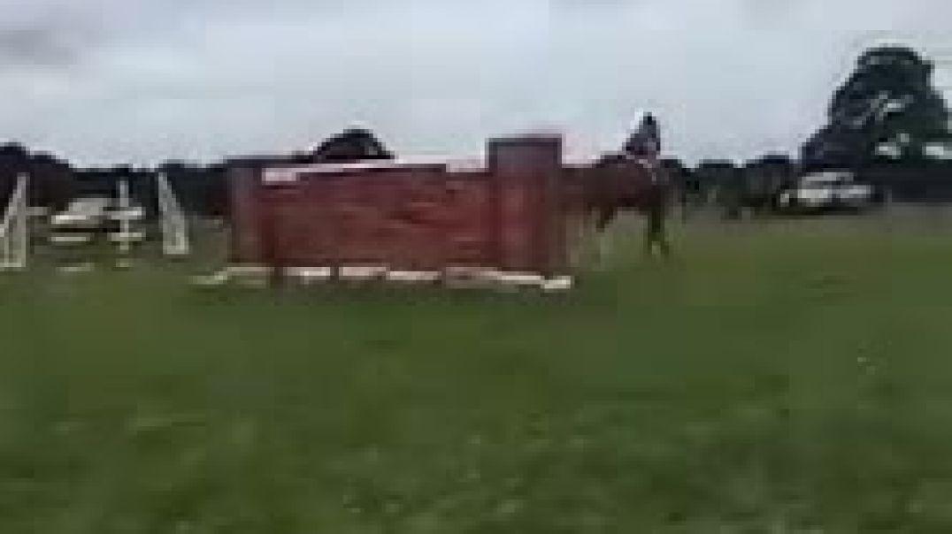 Susan Oakes Equestrian - Side Saddle Puissance