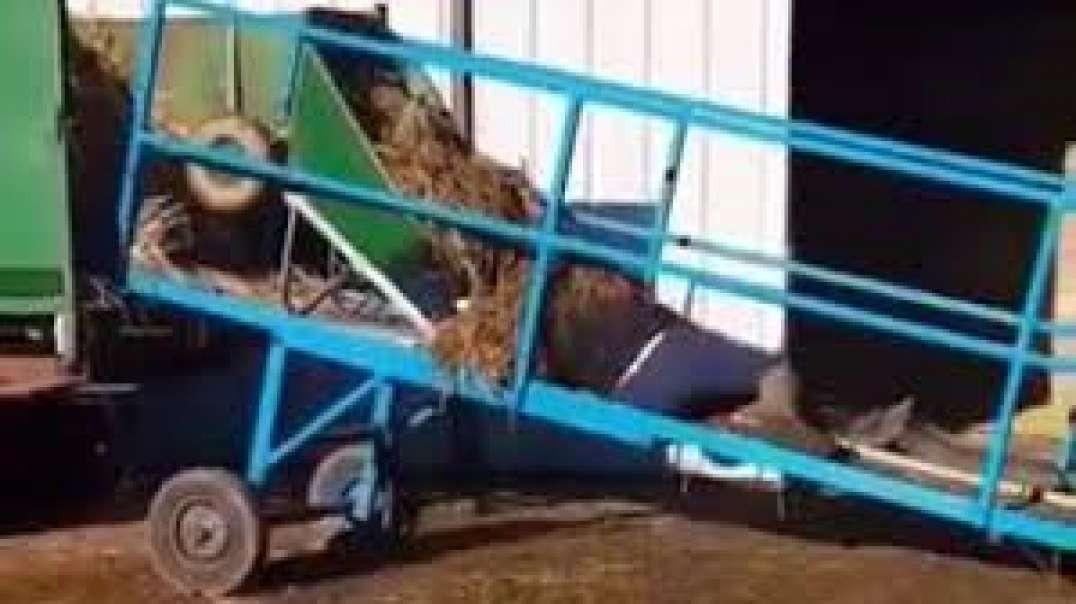 Wheelbarrow Disaster