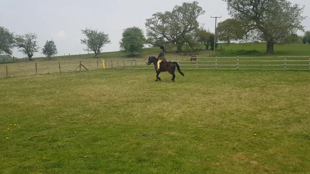 Sadie on Alfie, age 9, Class 5, junior horsemanship