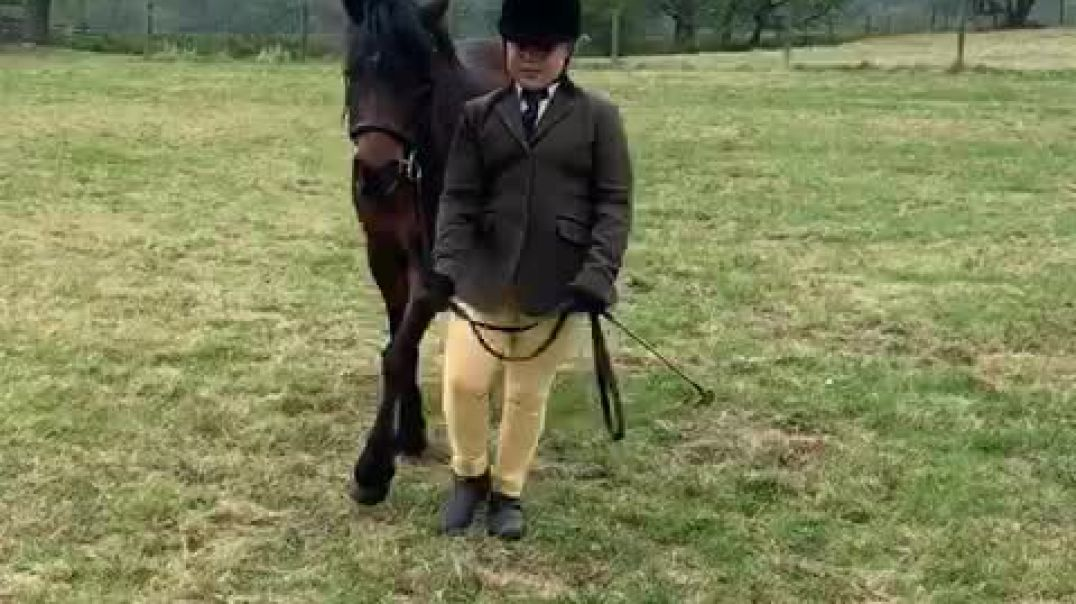 Sadie on Alfie, age 9, class 16, April show