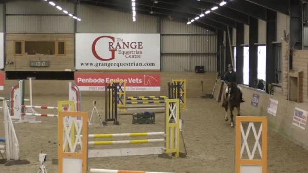 Kannan x iroko x belisar(2012)gelding , first ever show 90cm, The Grange