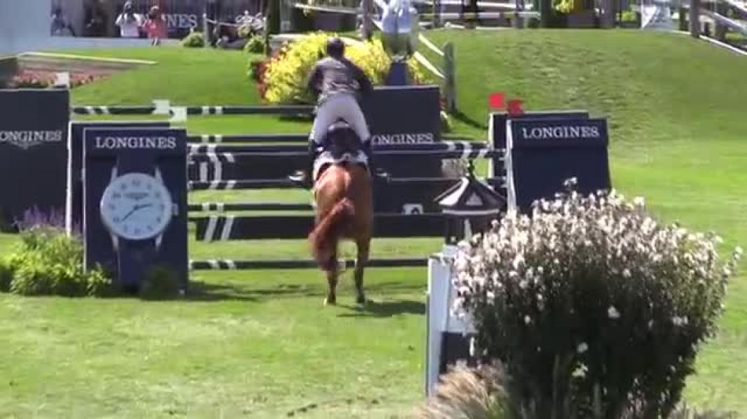 Video of BRINDIS BOGIBO ridden by ANDREW WELLES from ShowNet!