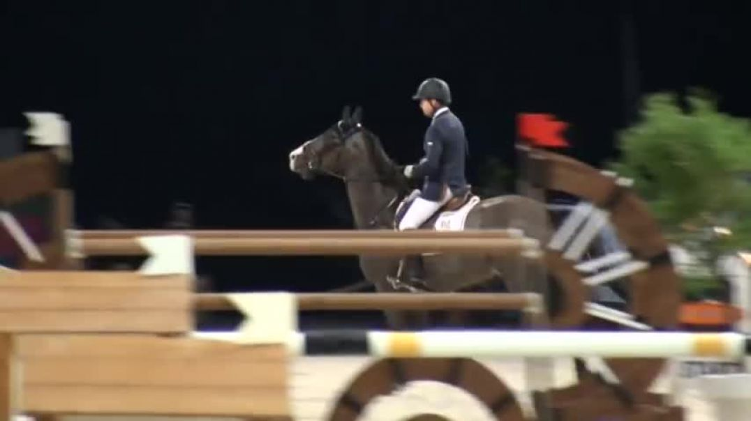 Quintero- jumping stallion (HOLST) by Quantum