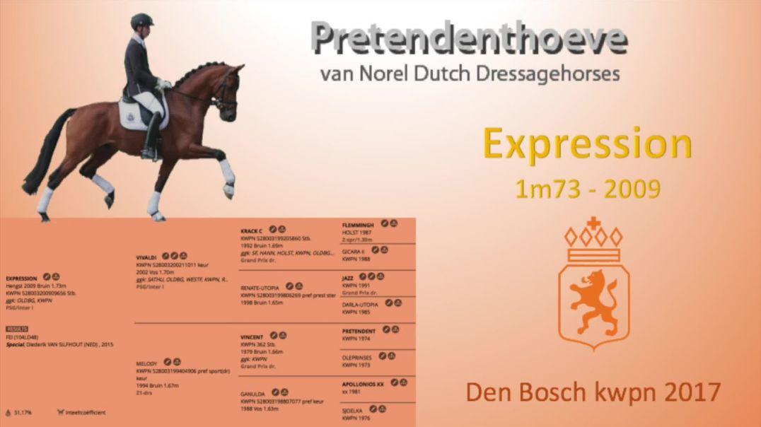 Expression kwpn Den Bosch 2017